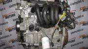 двигатель на форд фокус цена